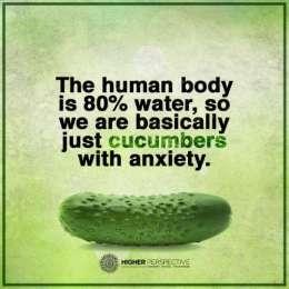 cucumbers-anxiety-l.jpg